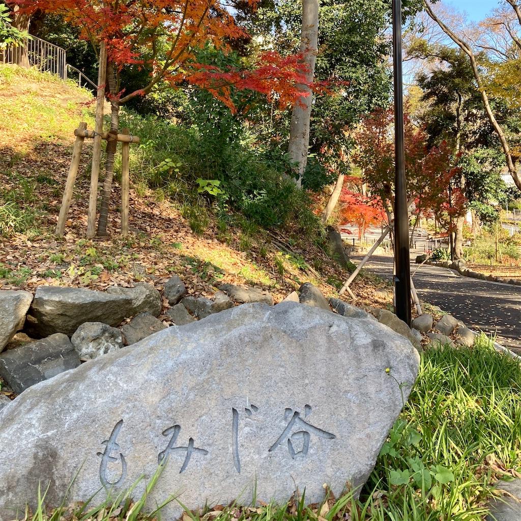f:id:koshikakeol:20201214123607j:plain