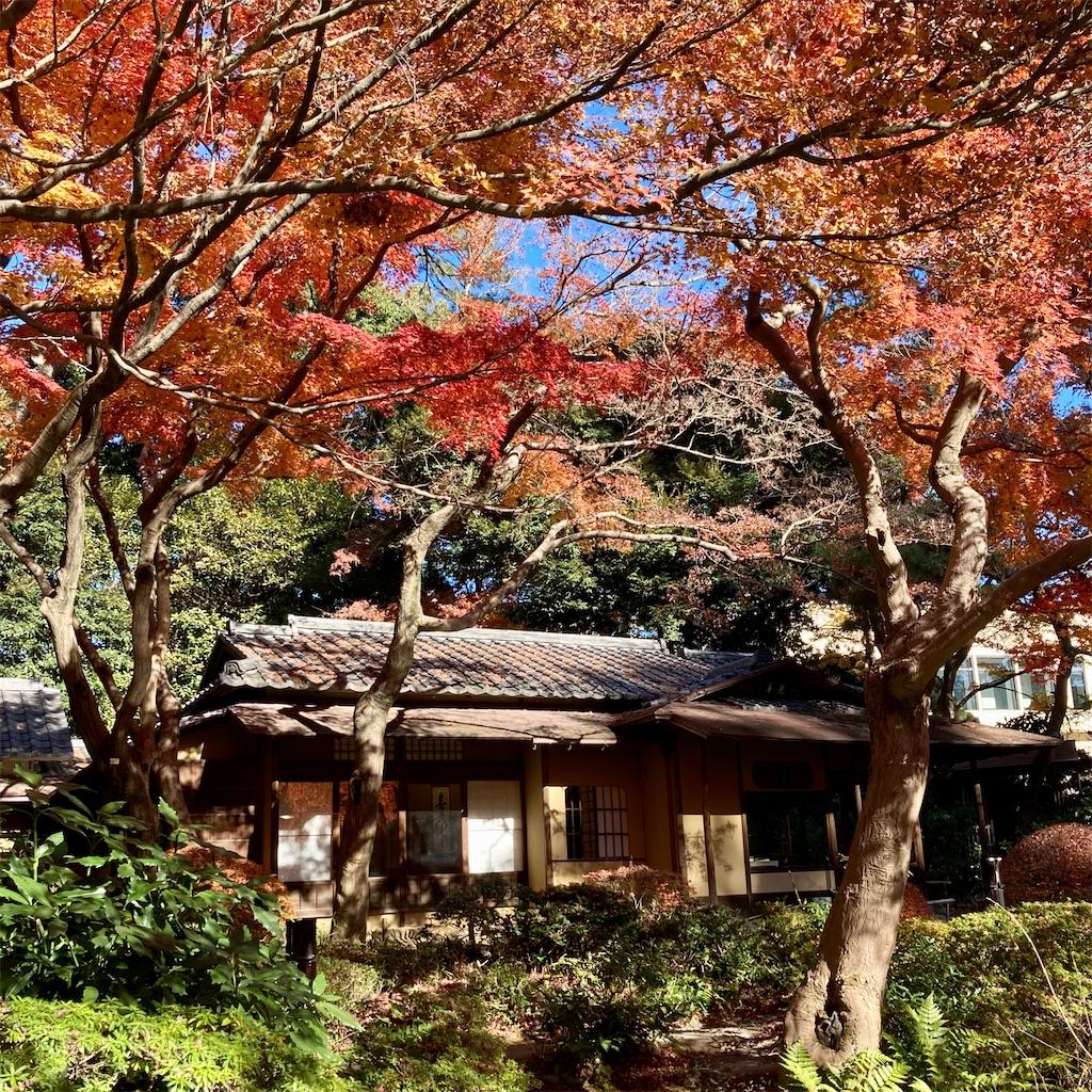 f:id:koshikakeol:20201217130049j:image