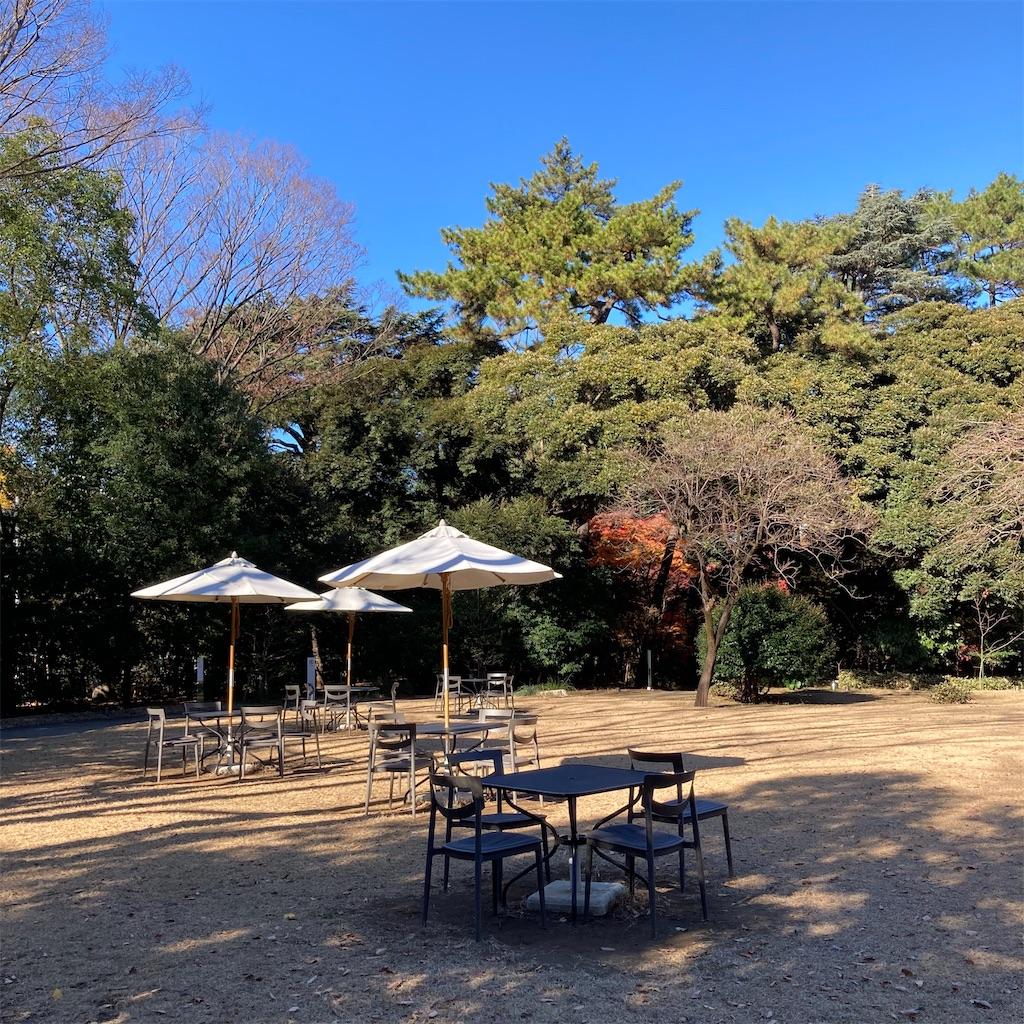 f:id:koshikakeol:20201217130111j:image