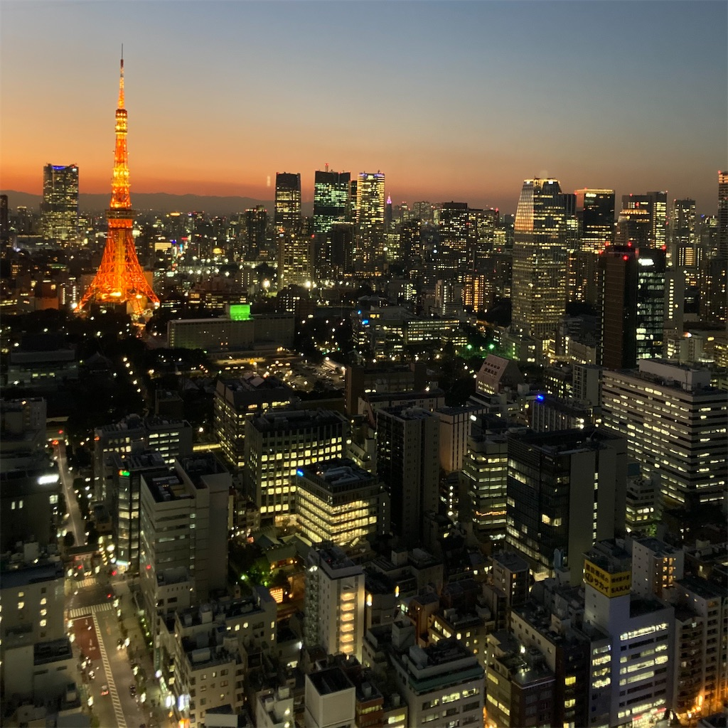 f:id:koshikakeol:20210113183652j:image
