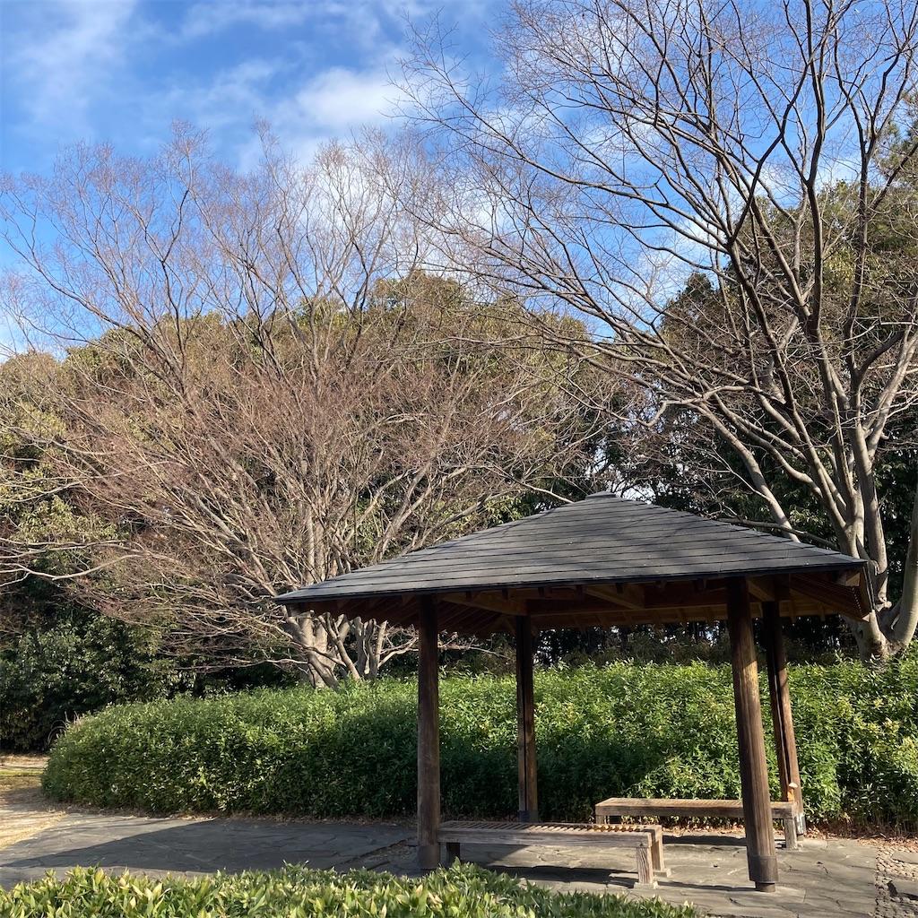 f:id:koshikakeol:20210121122139j:image