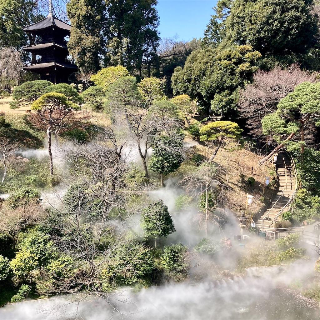 f:id:koshikakeol:20210310151117j:image