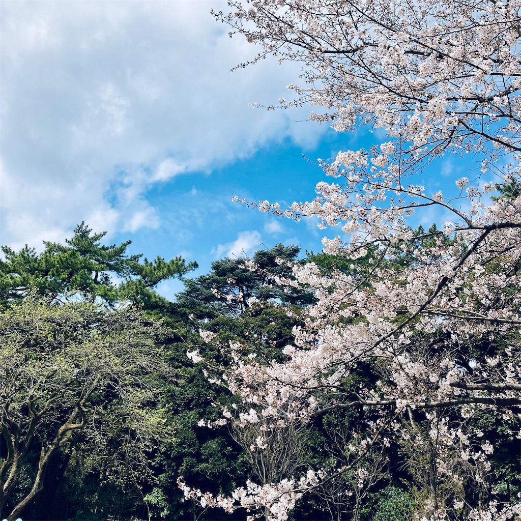 f:id:koshikakeol:20210322182044j:image
