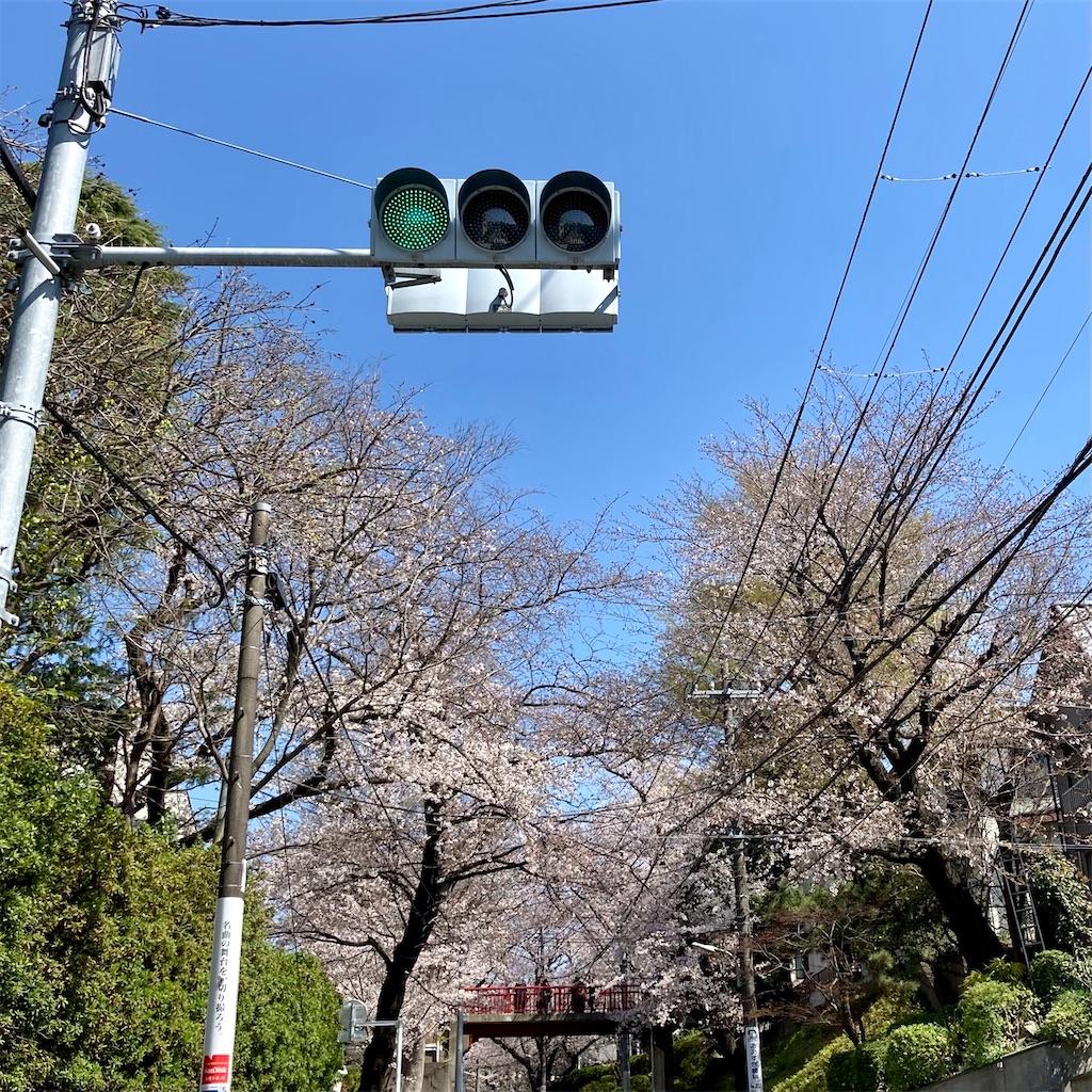 f:id:koshikakeol:20210324115915j:image