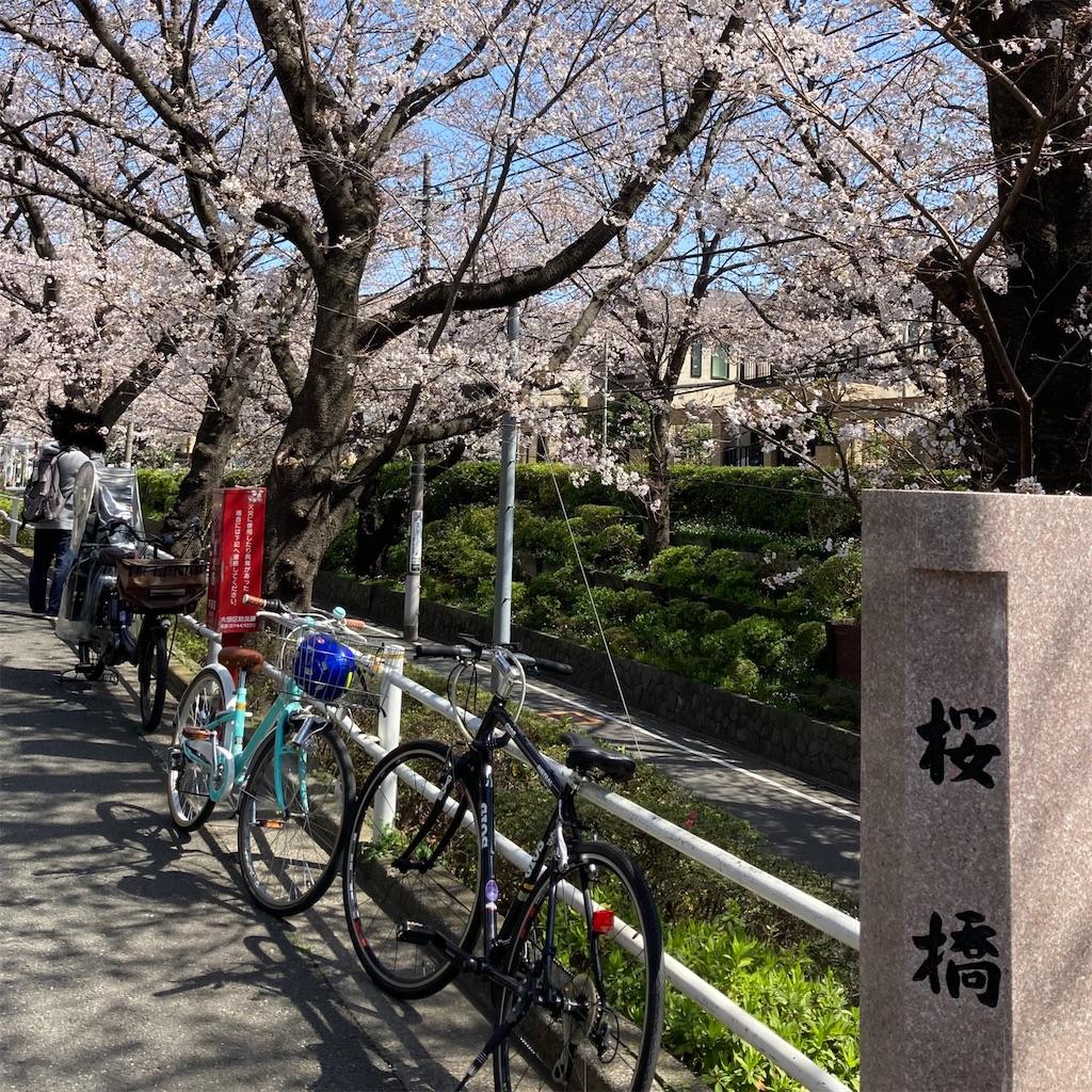f:id:koshikakeol:20210324120037j:image