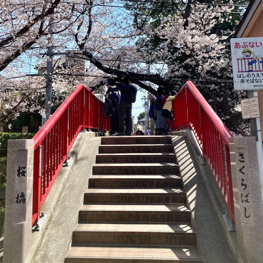f:id:koshikakeol:20210324120041j:image