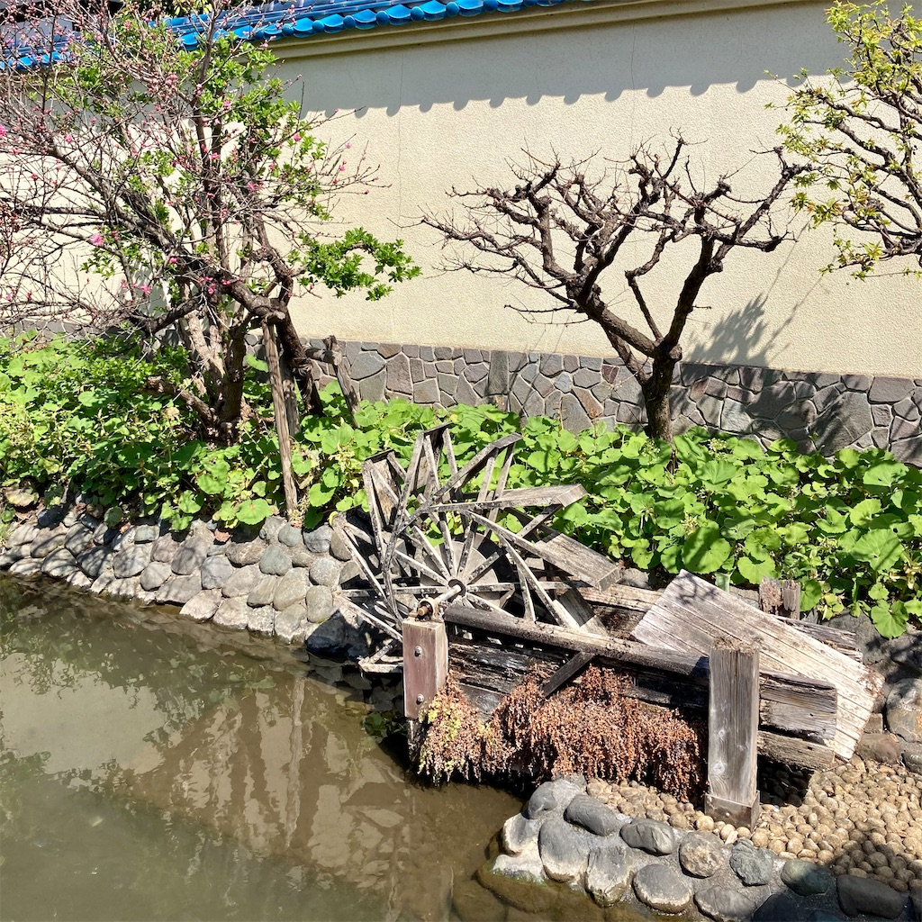 f:id:koshikakeol:20210324121901j:image