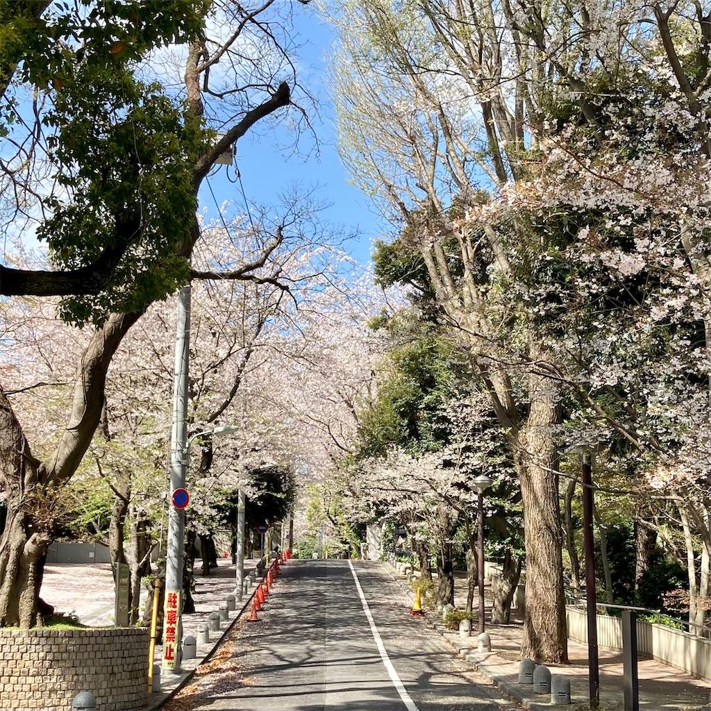 f:id:koshikakeol:20210329124834j:image