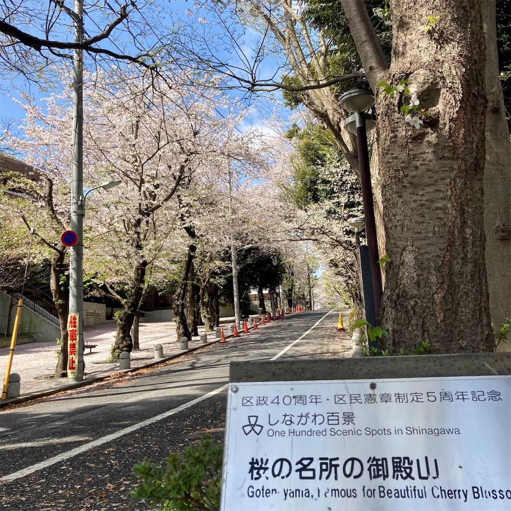 f:id:koshikakeol:20210329124849j:image