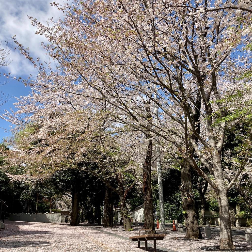 f:id:koshikakeol:20210329124853j:image