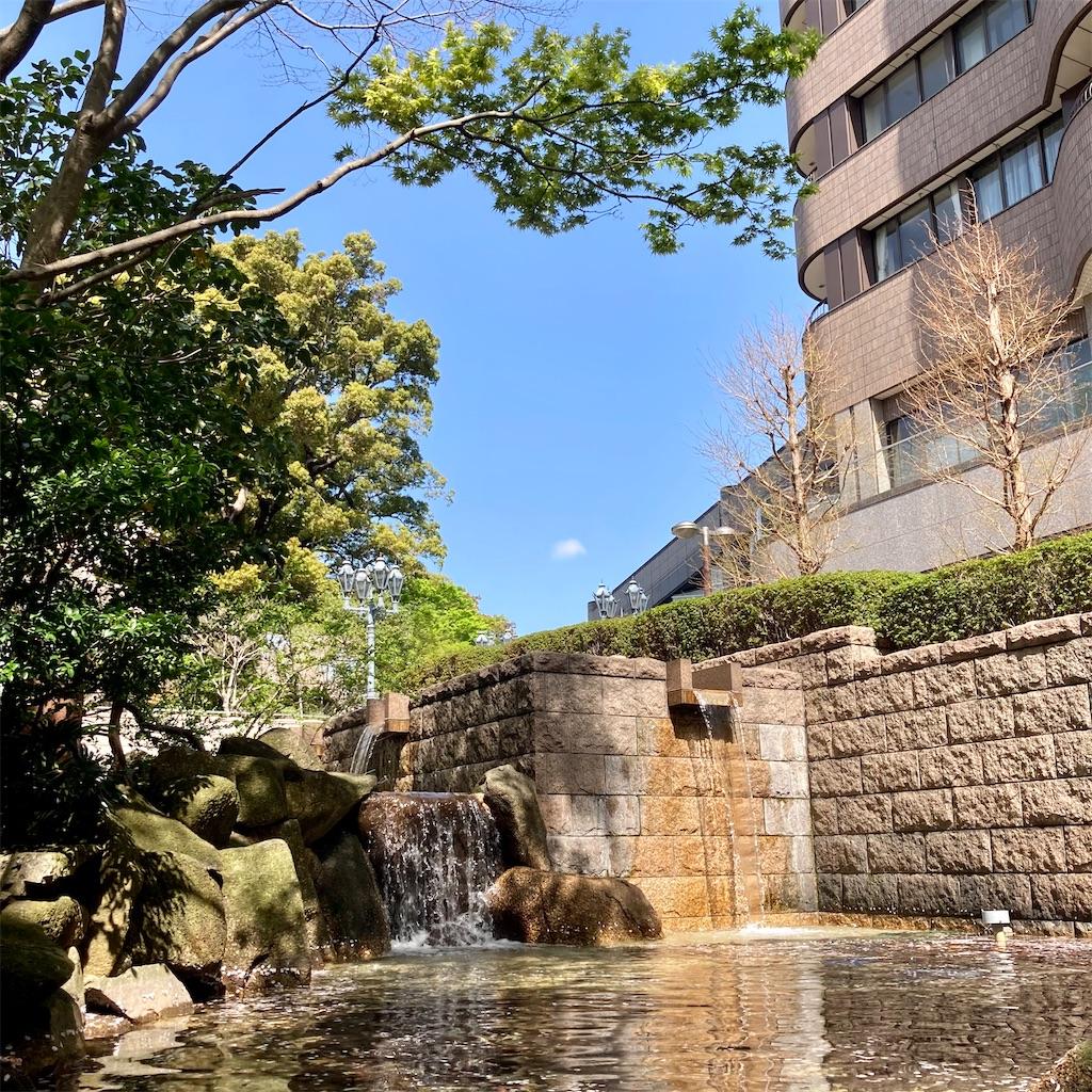 f:id:koshikakeol:20210329124933j:image