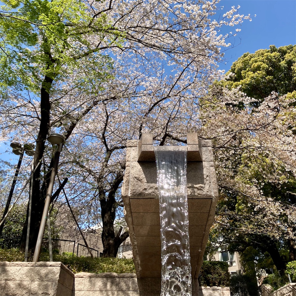 f:id:koshikakeol:20210329124937j:image