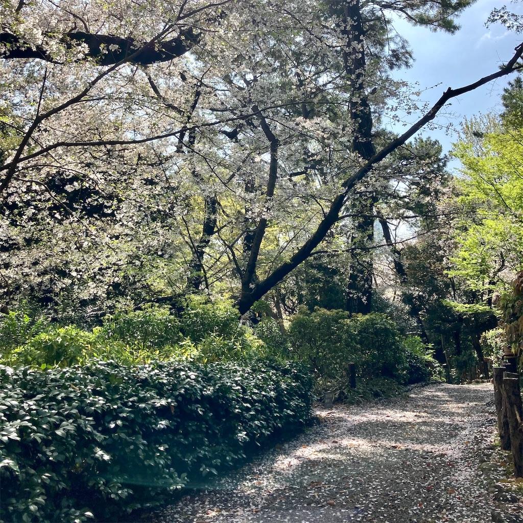 f:id:koshikakeol:20210329125200j:image
