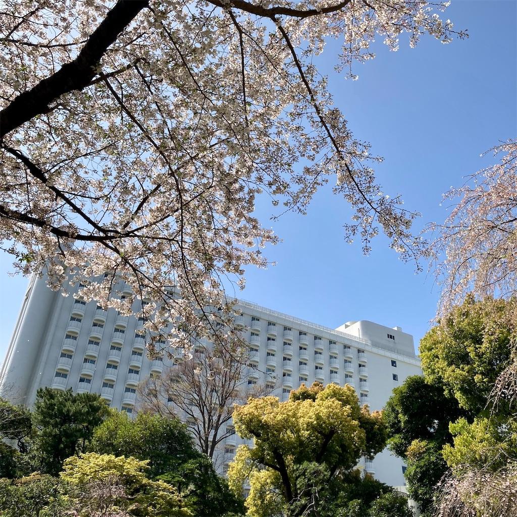 f:id:koshikakeol:20210329130313j:image