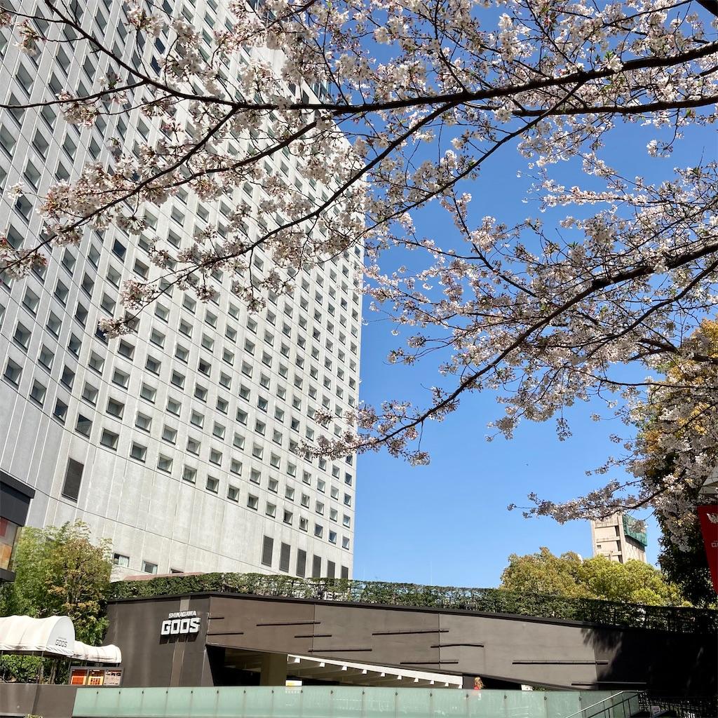 f:id:koshikakeol:20210329130405j:image