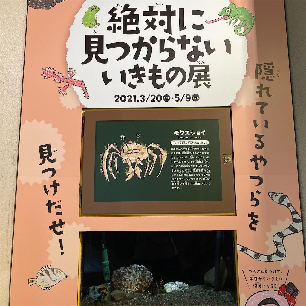 f:id:koshikakeol:20210419153628j:image