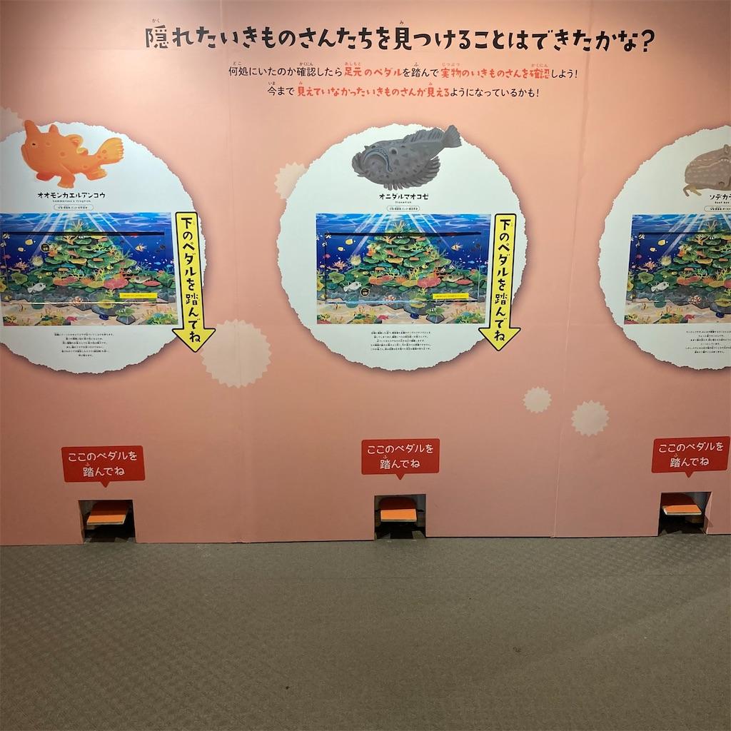 f:id:koshikakeol:20210419153646j:image