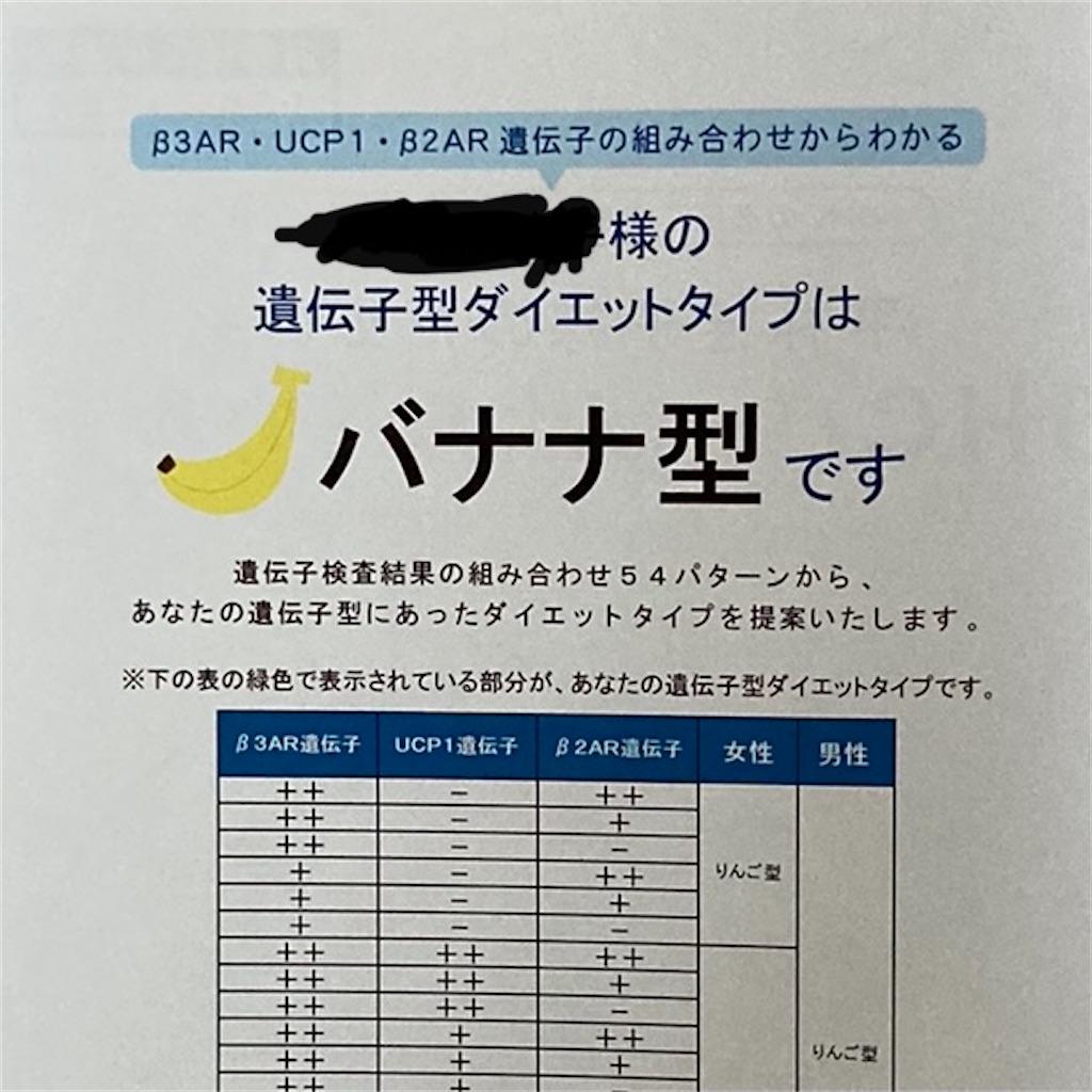 f:id:koshikakeol:20210530175538j:image