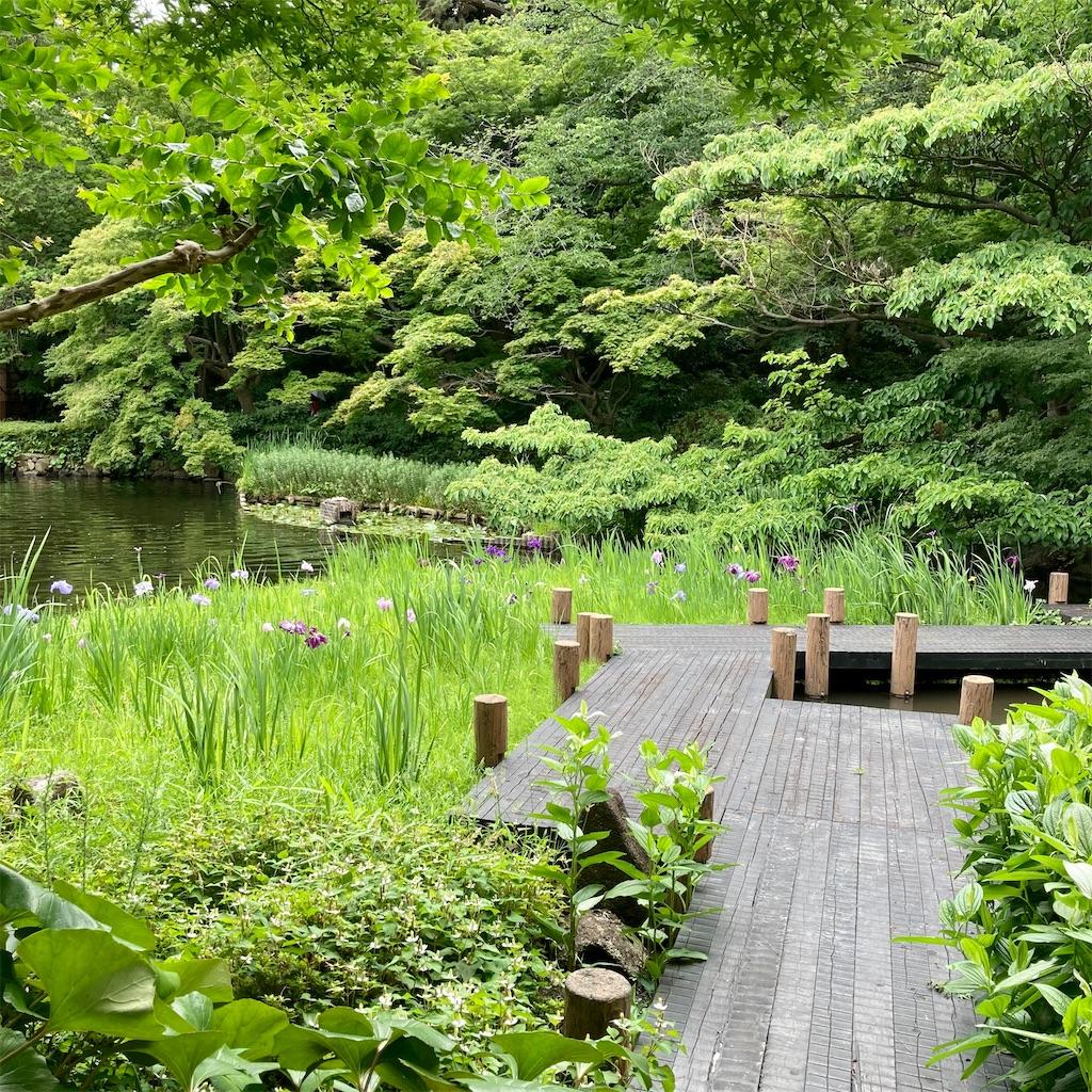 f:id:koshikakeol:20210605171333j:image