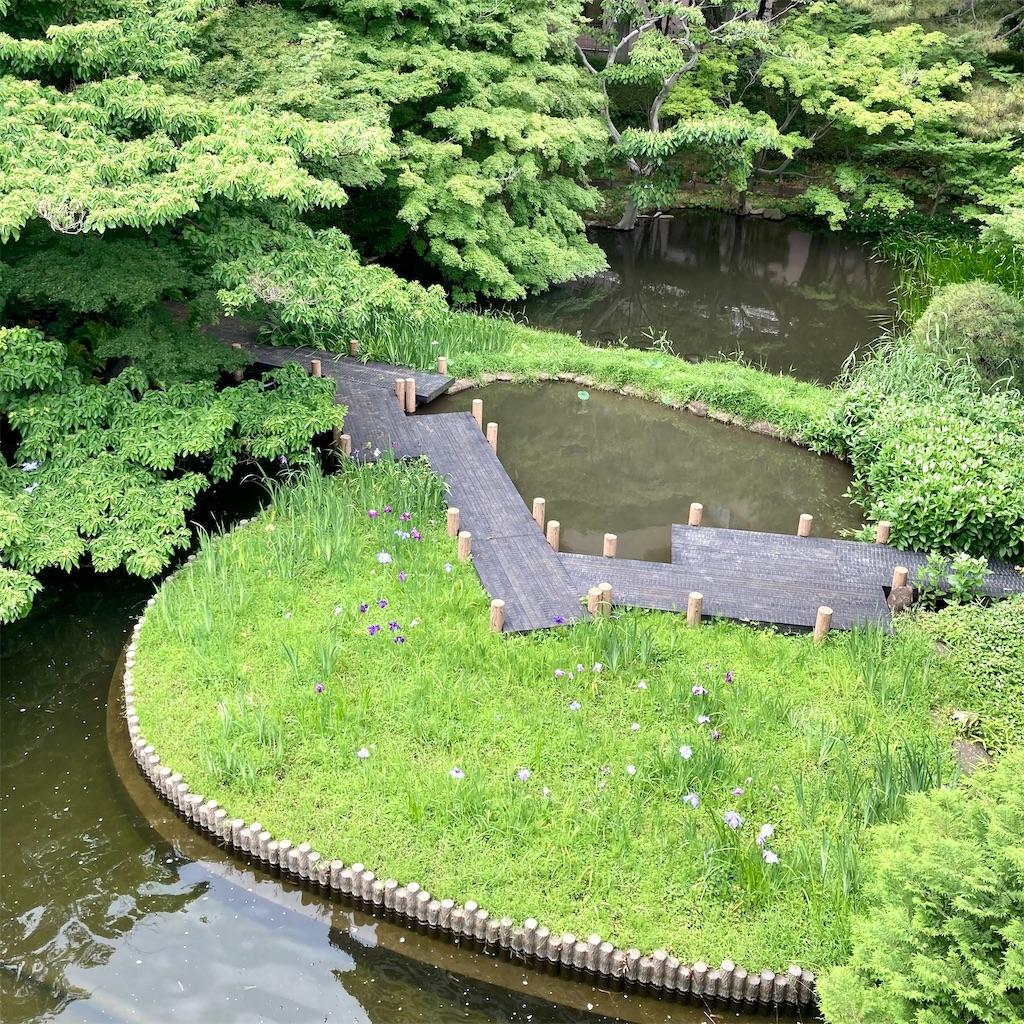 f:id:koshikakeol:20210605171349j:image
