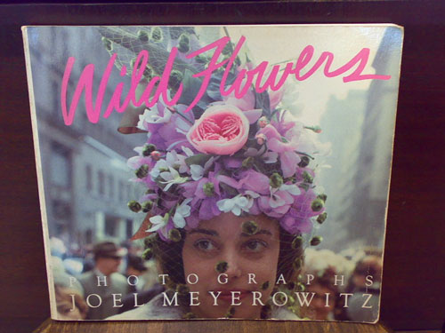 [wild_flowers][joel_meyerowitz][写真集]
