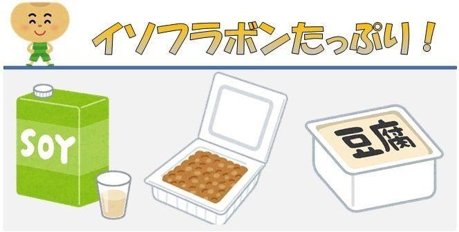 豆乳と納豆と豆腐のイラスト