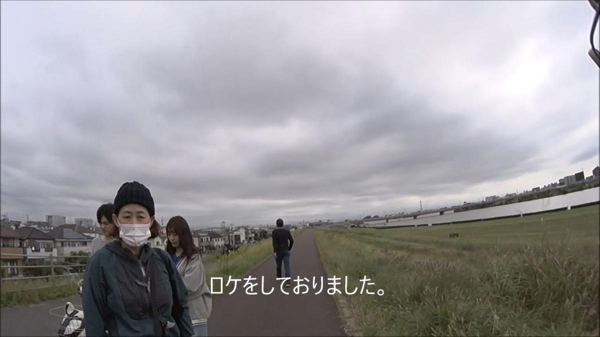f:id:kosodatehiroshi:20201117163305j:plain