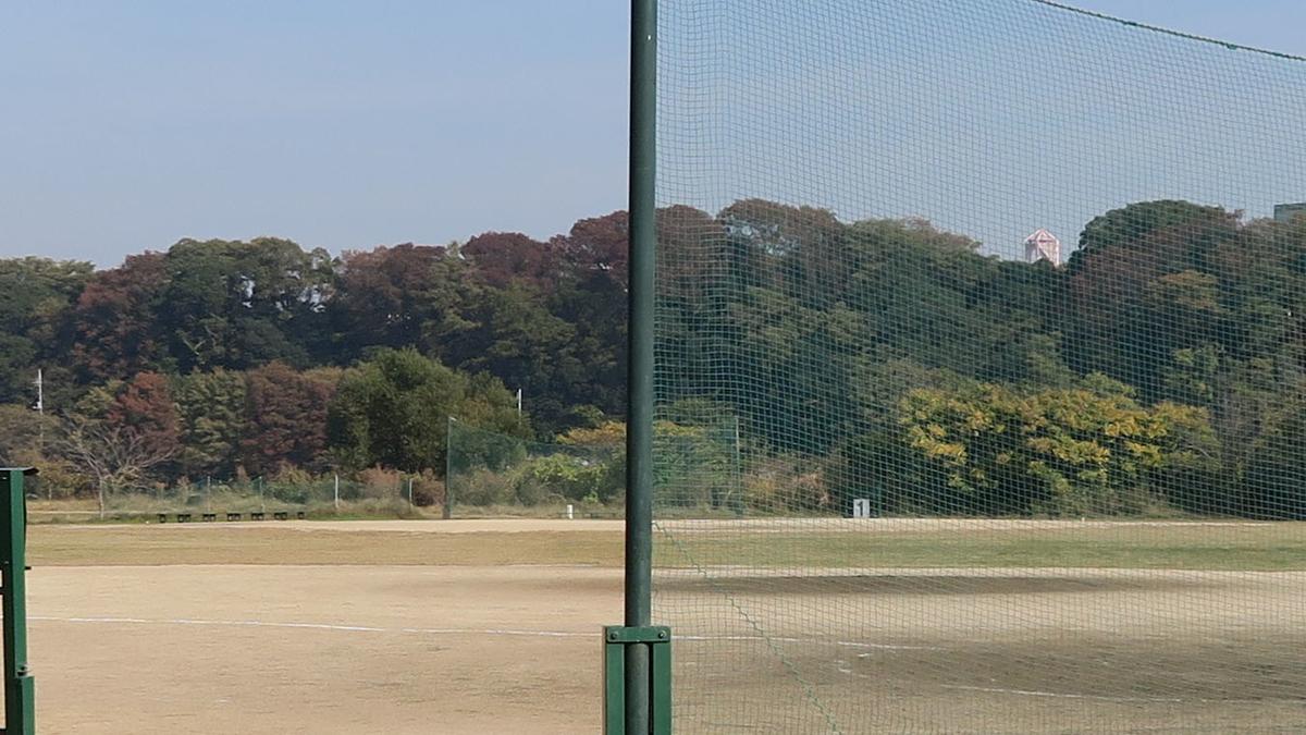 f:id:kosodatehiroshi:20201120171045j:plain