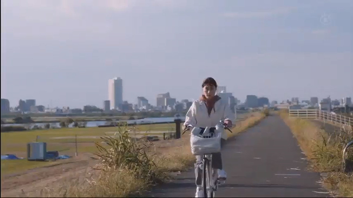 f:id:kosodatehiroshi:20201208165851j:plain