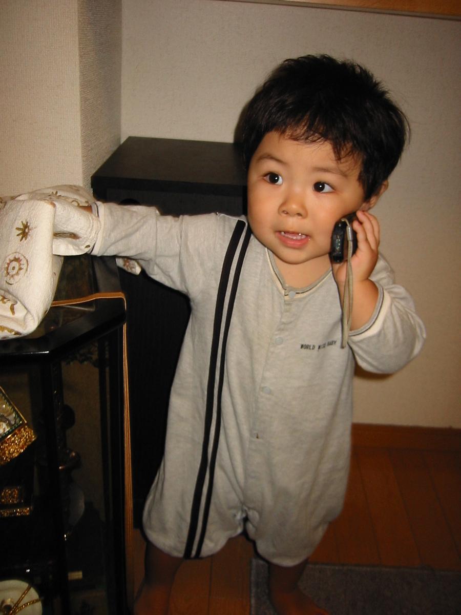 f:id:kosodatehiroshi:20201211093932j:plain
