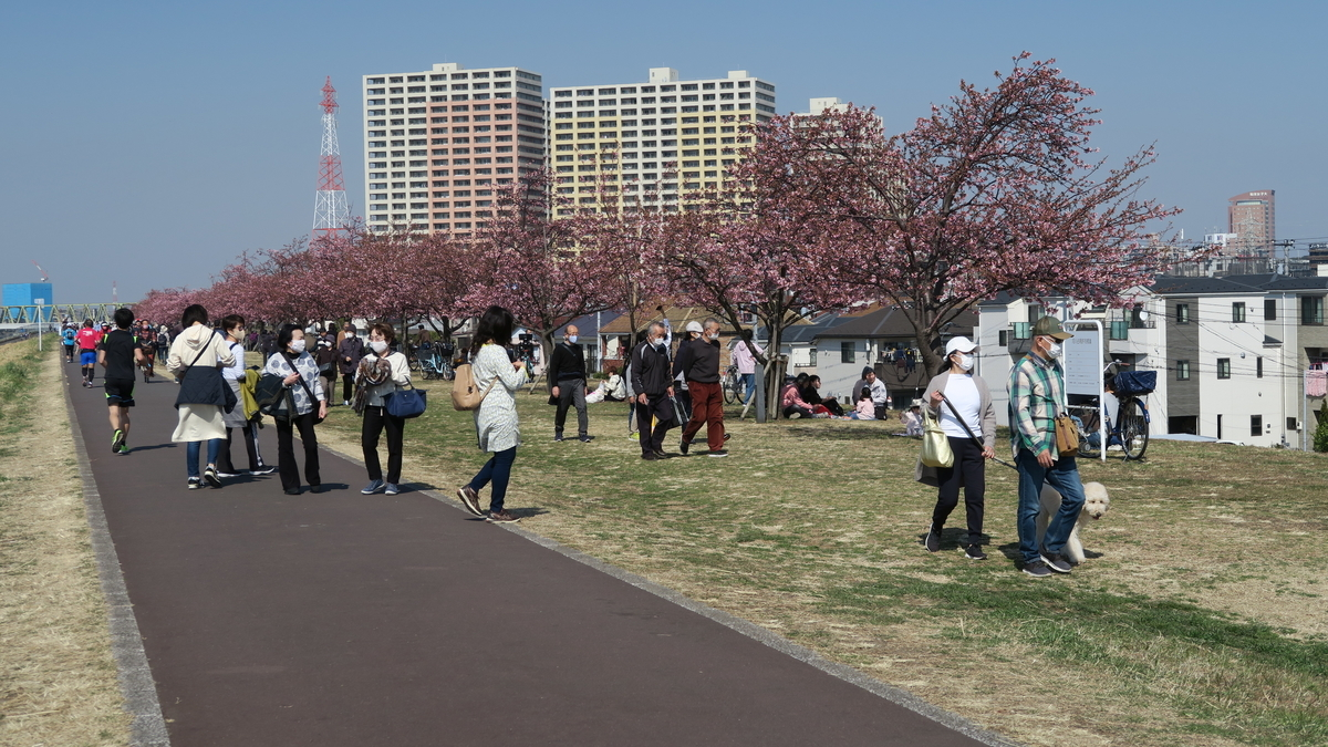 f:id:kosodatehiroshi:20210221144644j:plain