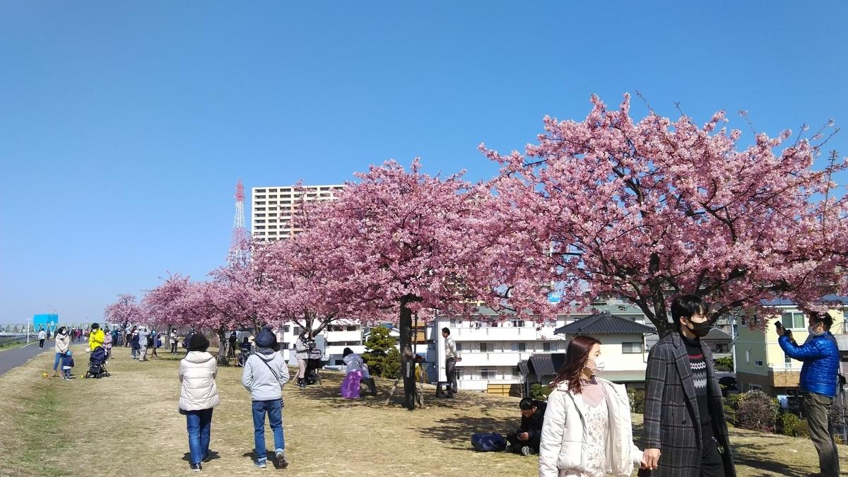 f:id:kosodatehiroshi:20210228154203j:plain
