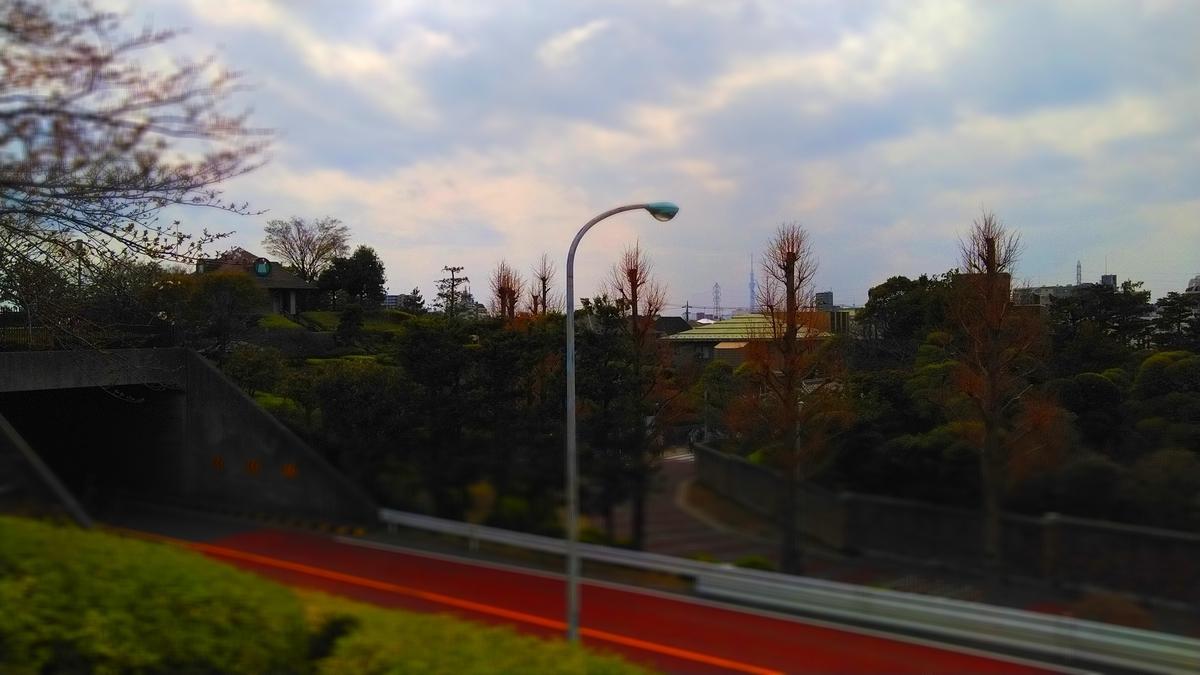f:id:kosodatehiroshi:20210320152902j:plain
