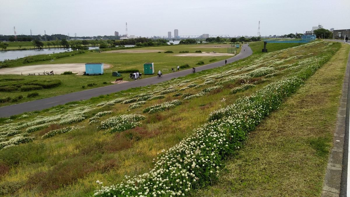 f:id:kosodatehiroshi:20210509104116j:plain