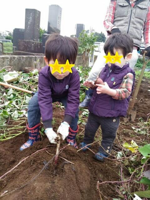 f:id:kosuke0617:20161105180442j:image