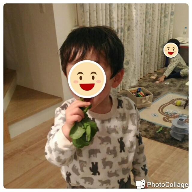 f:id:kosuke0617:20170326170147j:image