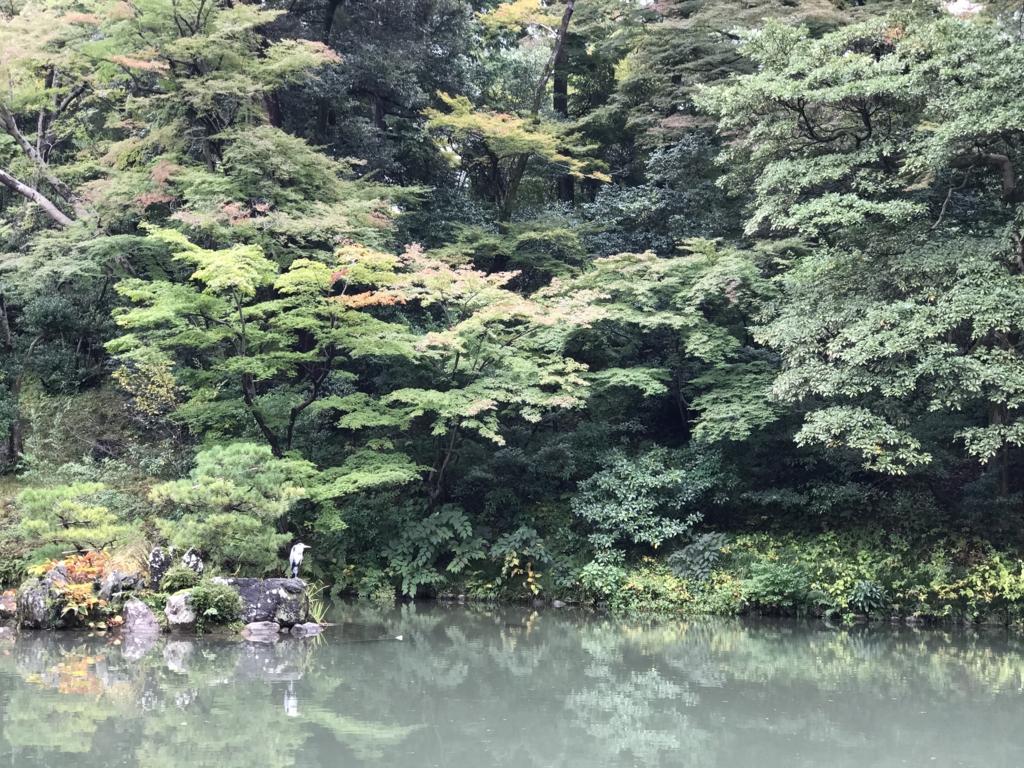 f:id:kosuke0620:20161104001439j:plain