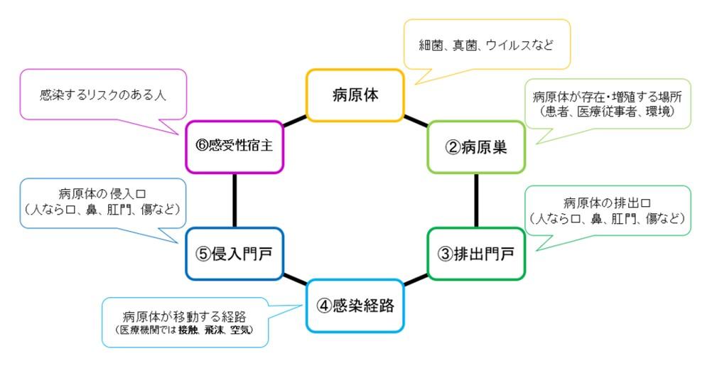 f:id:kosuke5800:20191111220529j:plain