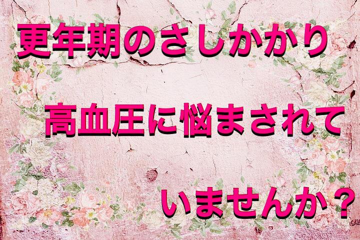 f:id:kosumosu7kun:20191004182221j:plain