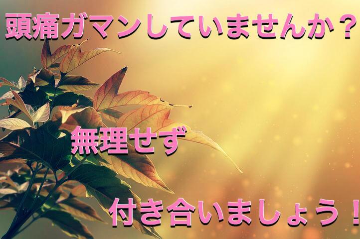 f:id:kosumosu7kun:20191016202553j:plain
