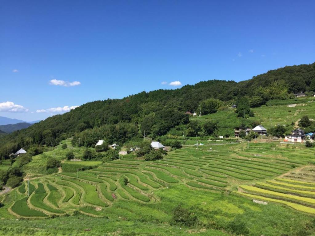 f:id:kota-miyake-10:20170913234115p:plain