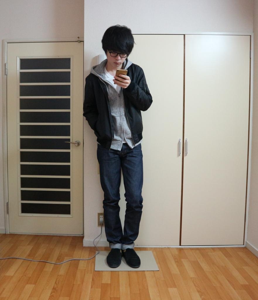 f:id:kota04:20161205194326j:plain