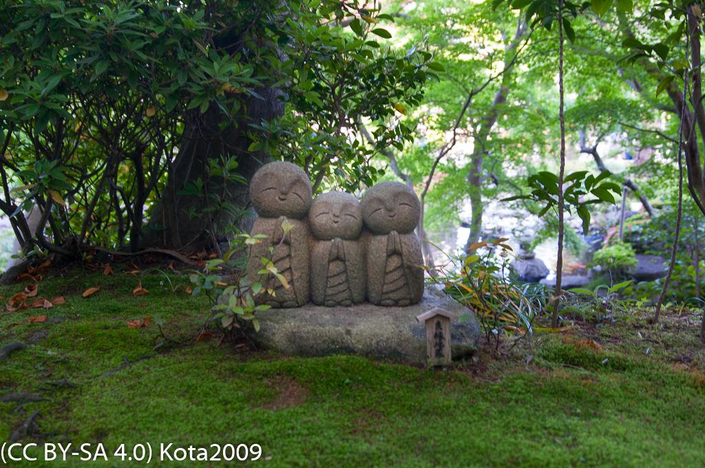 f:id:kota2009:20170502154619j:image:w640