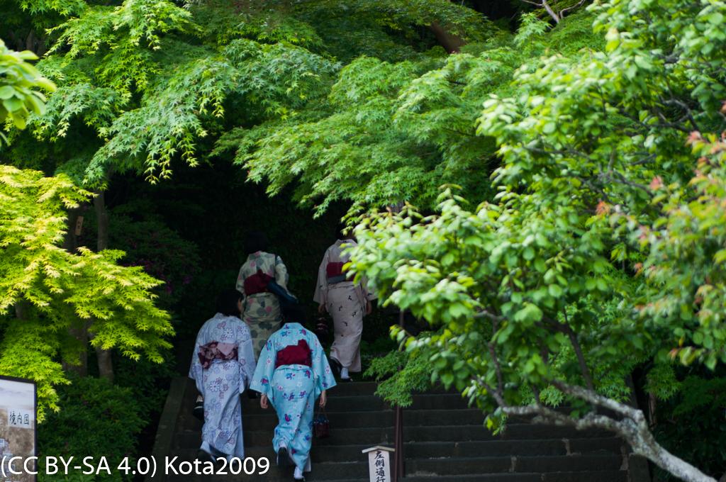 f:id:kota2009:20170502162555j:image:w640