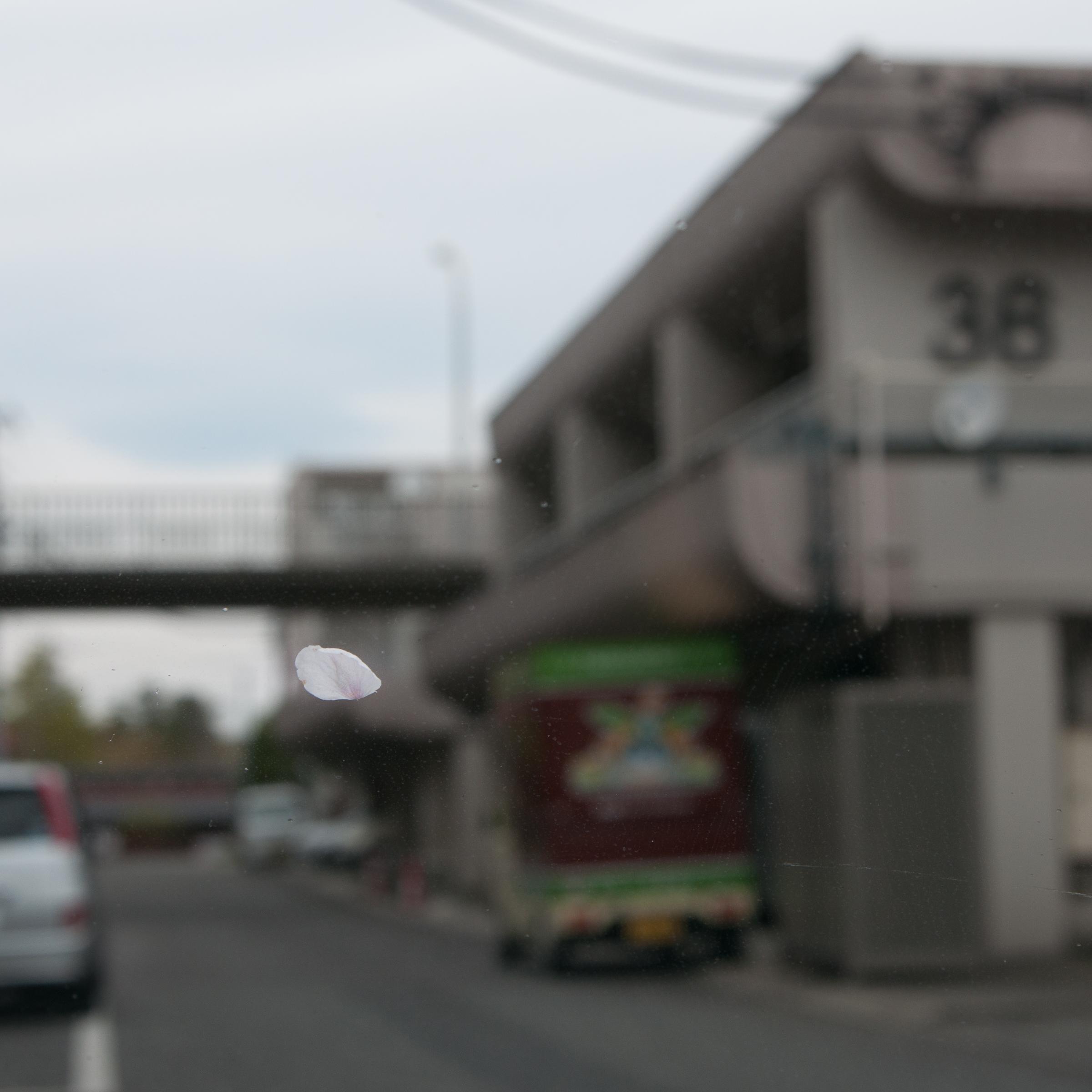 f:id:kota2009:20190414113451j:plain