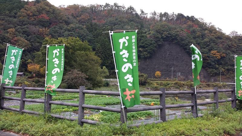 f:id:kotakunn:20141114122511j:image:w360