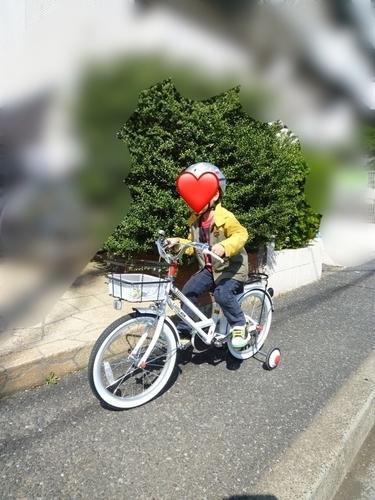 f:id:kotamomonga:20200821174646j:plain