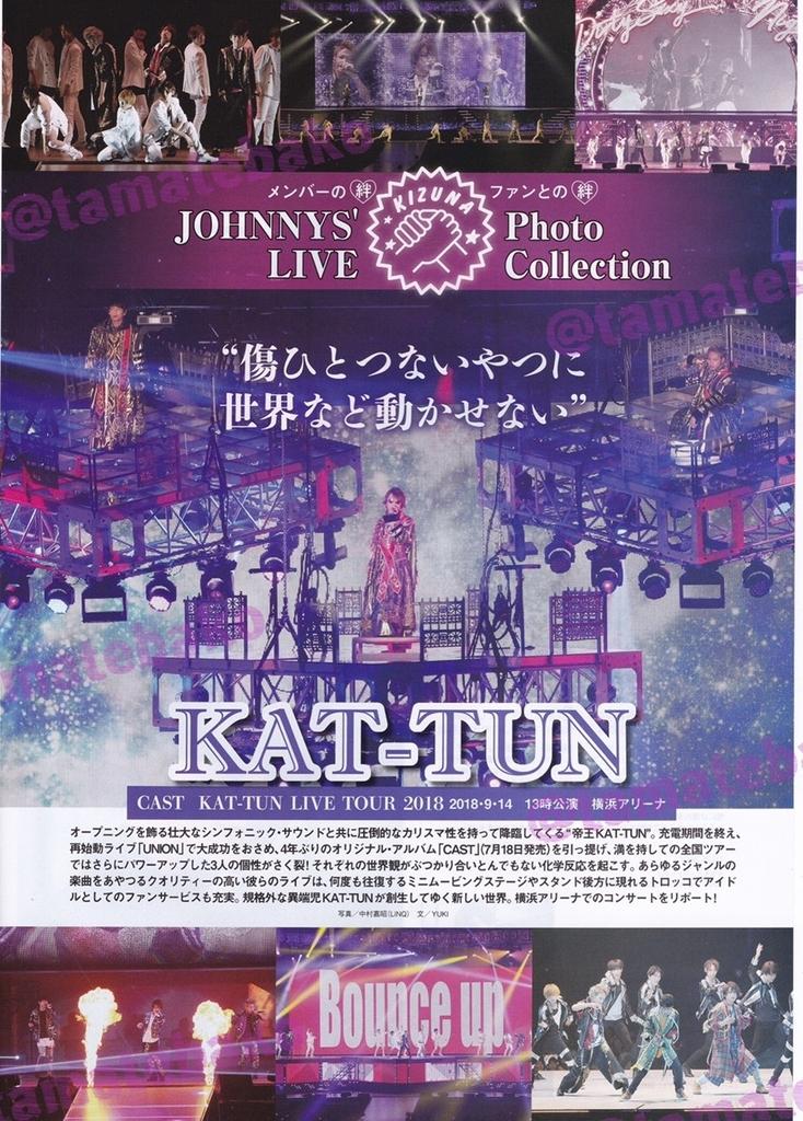 f:id:kotaoshigoto:20190104030614j:plain