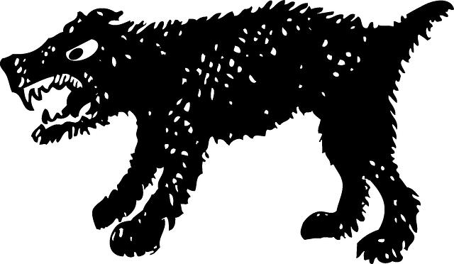 f:id:kotaro-dog:20210221234243p:plain