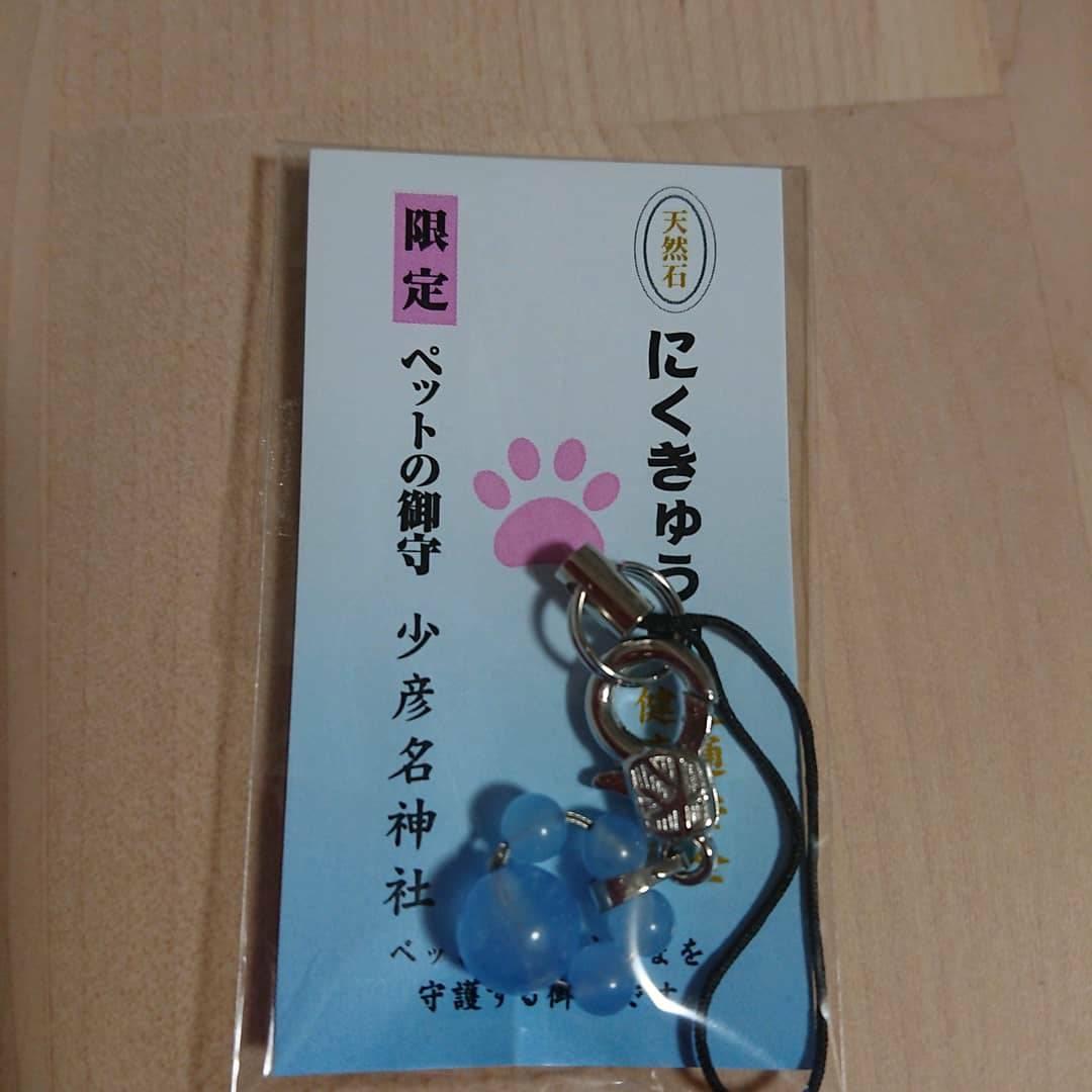 f:id:kotaro-dog:20210308003814j:plain